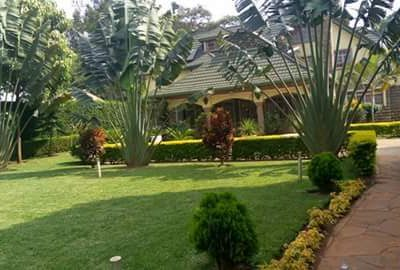 Landscaping 3