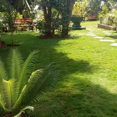 Landscaping in Kenya
