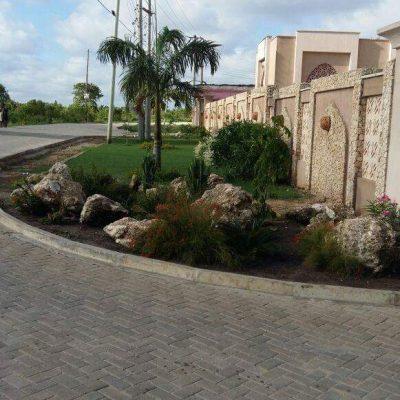 gardening and landscaping in Kenya