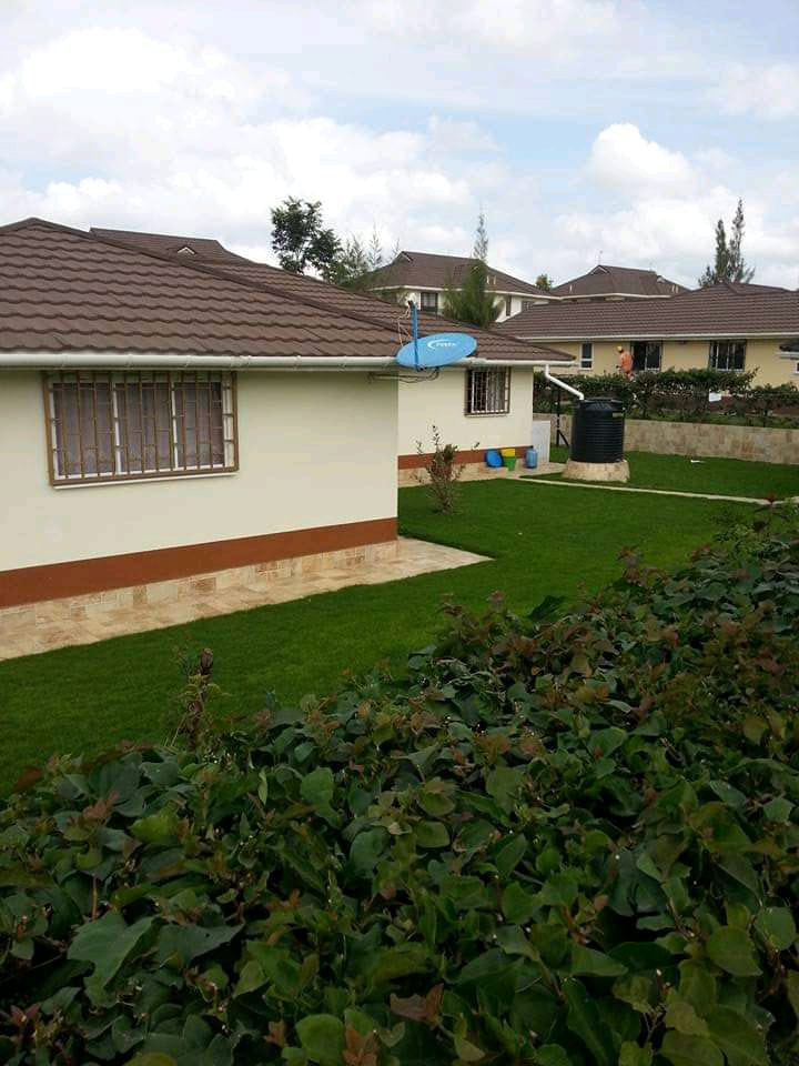 Landscaping in Kenya